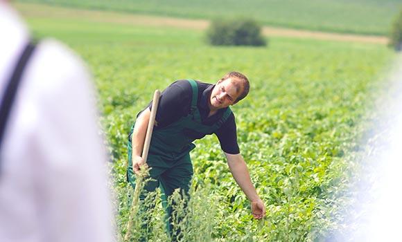 Tobias Schwoll, Landwirt