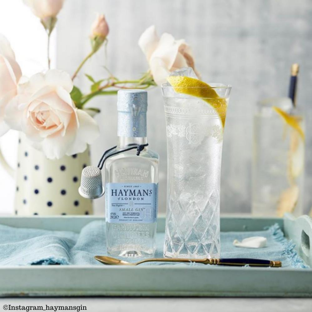 Haymans Small Gin & Tonic